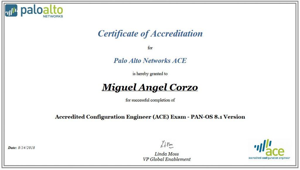 Palo Alto Ace 8.1